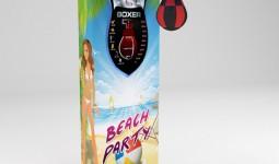 beachparty_big.jpg